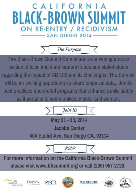 Black Brown Summit Flyer
